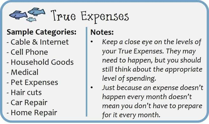 True Expenses