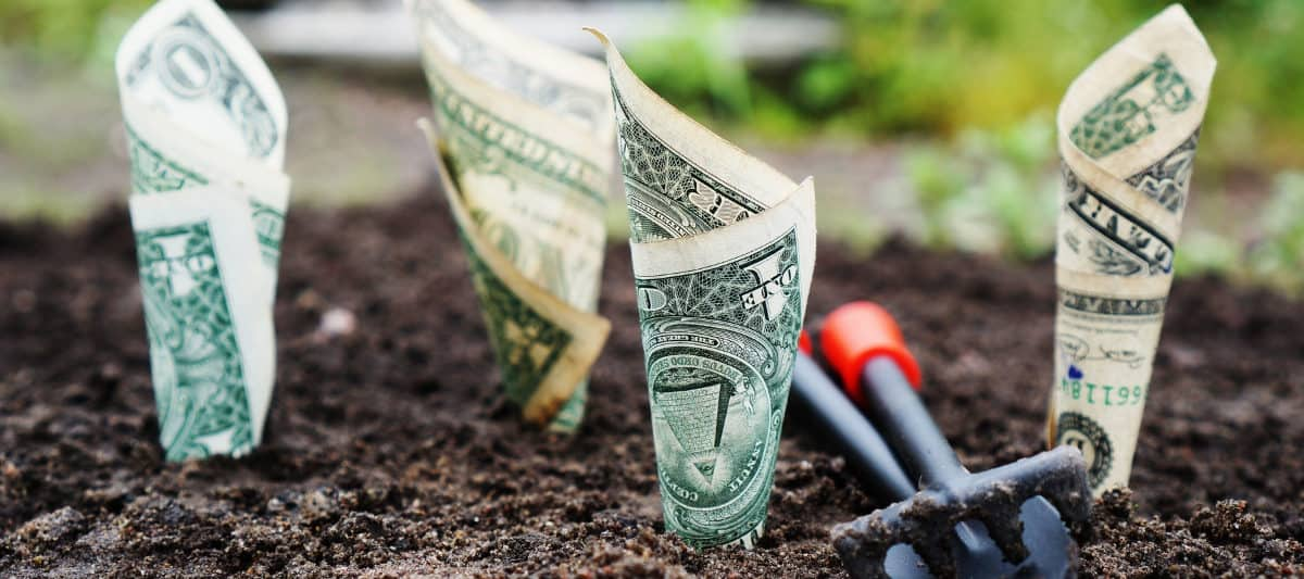 how to stat investing money to make it grow