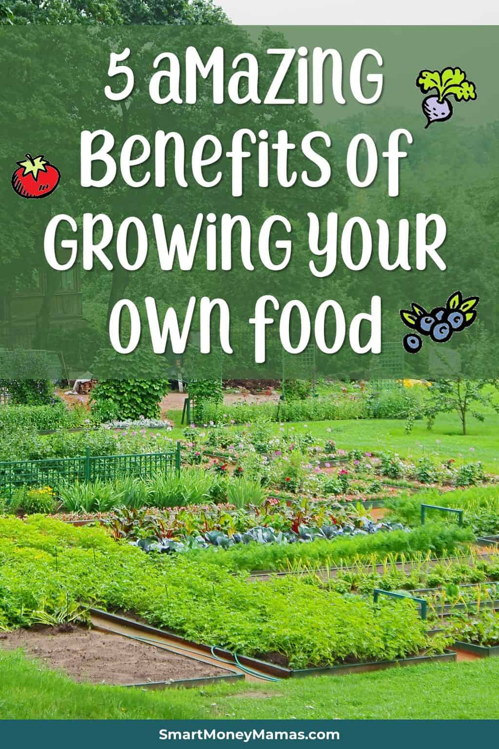 5 health and lifestyle benefits to growing your own food | Why growing your own food is about more than saving money #healthyliving #homesteading #growyourown #growfoodnotlawns