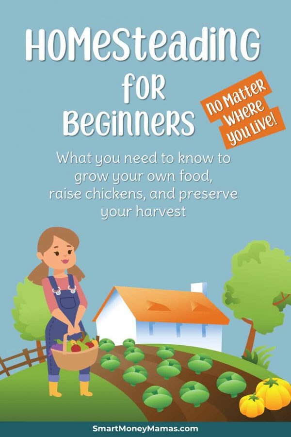 Homesteading for Beginners - No Matter Where You Live!