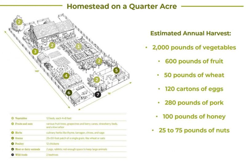 Quarter Acre Home